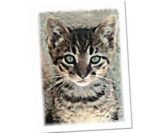 Tabby Cat Card, note card, kitten - Winkle