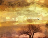 Sunrise Tree 24x36 Canvas Gallery Wrap - No Frame needed