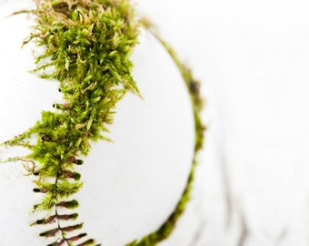Moss Vintage Baseball wall decor wall decor dragon Knothole green white sport game