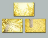 Yellow Wall Art Set of Three, Yellow Tree Photography, Lemon Yellow Modern Wall Art Yellow Ginkgo Trees Leaves Mustard Yellow Grey Prints
