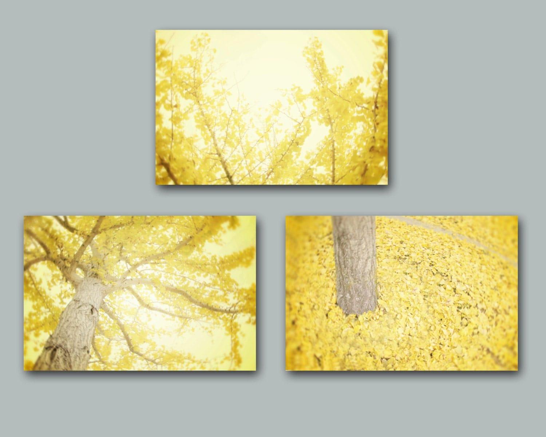 yellow wall art set of three yellow tree by
