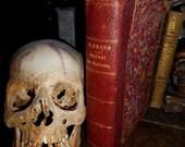Rare Antique French Medical Diagnostic Book Manuel de Diagnostic c.1890 Paris at Gothic Rose Antiques