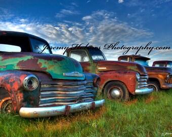 Fine Art Print of rusty old vintage trucks