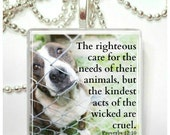The righteous care for the needs of their animals  Proverbs 12:10  Glass Pendant