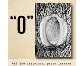 Letter O  Alphabet Photography  Black and White 4x6 Photo Letter