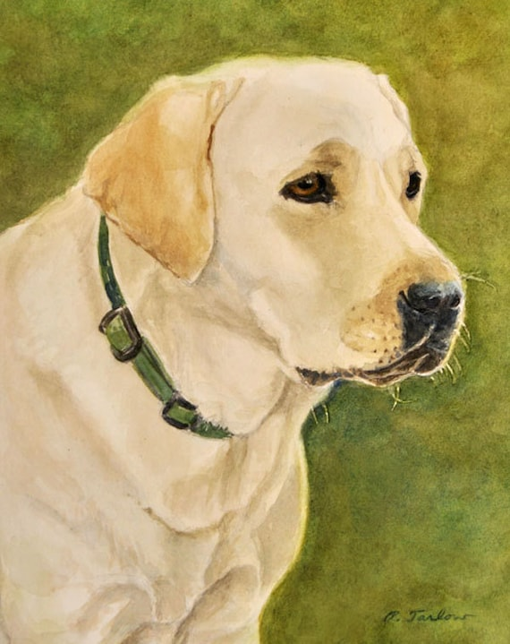 Yellow Labrador Retriever 8x10 Dog Art Print From By