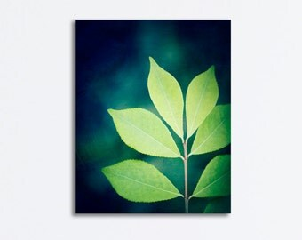 "Leaves Canvas Print - nature photography green blue navy dark wall art botanical canvas wrap leaf photo teal photograph, ""Designer Leaves"""