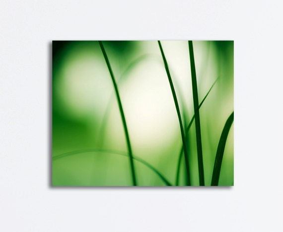 "Green Nature Canvas Print, modern abstract photography gallery wrap canvas white botanical photograph fine art, 16x20, 11x14, ""Natural Flow"""