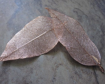 2 Pendants, Indian rubber plant and copper-finished brass, copper, 51x33mm-77x51mm leaf.JD 264