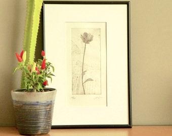 Original Etching Print Flower Branch Garden Aquatint Printmaking TUSCAN SPRING Shabby Home Decor Fine Art Print 10x6