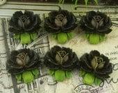 6 Pcs  Beautiful  Rose Cabochon Black - Hand Painted(B05)