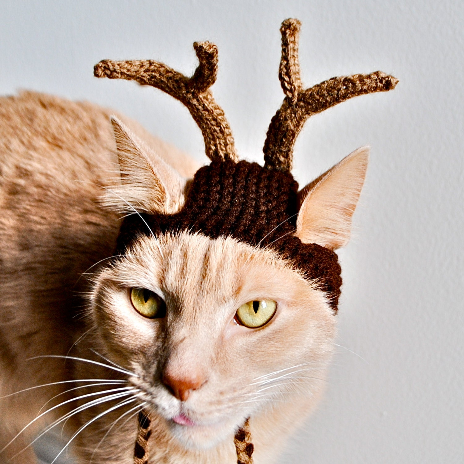 Knitting Pattern For Dog Reindeer Hat : Reindeer Costume for Dogs Hand Knit Dog Hat Custom by ...