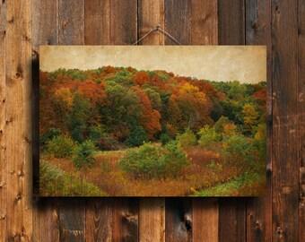 Autumn Colors - Autumn photography - Autumn decor - Fall decor- Autumn Trees - Fall photography - Autumn art