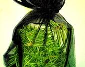 FIR needles - Douglas Fir cut - single sachet black - naturally scented - organic