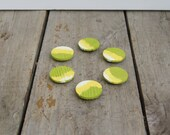 Reclaimed wood magnets  Set of 6 - Hand Painted green yellow white wash
