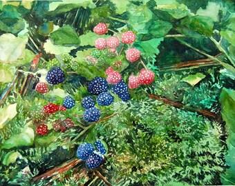 watercolor ORIGINAL Wild Blackberries forest, woodland summer watercolour