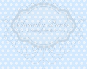 2ft x 2ft Vinyl Photography Backdrop for Accessories, product pictures / Pale Blue Polka Dots