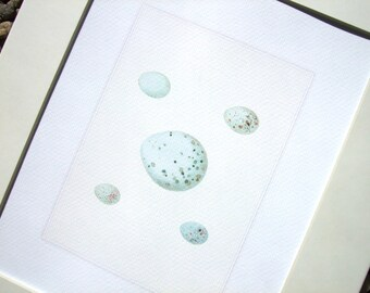 Pastel Spring Egg Set of 5 in Pale Blues Archival Quality Print