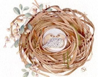 turtle doves Christmas nest painting watercolor art original