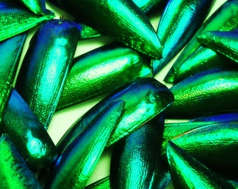 "Multipack 1.25"" Elytra Beetle Wings GREEN TONE natural iridescent elyctra insect bug metallic jewel green and blue taxidermy"