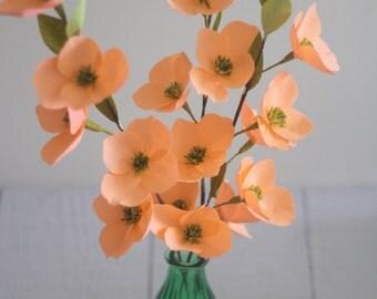 Paper flower dogwood