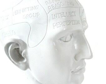 phrenology head bust, modern white, phren head, anatomy art, bust statue, mystic, psychology