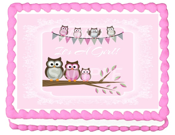 baby shower owl sheet cakes for girls images pictures becuo