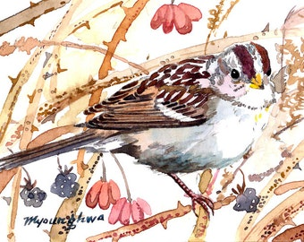 ACEO Limited Edition 2/25 - Sparrow in the autumn bush