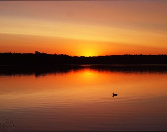 Sunrise Photography, Sunrise on the Water, Duck on the Water, Summer Days, Sunrise, Orange, Yellow, Lake Print, At the Lake