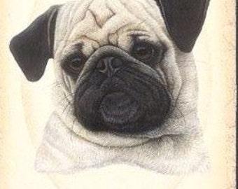 Antique Pug Face Print Decoupaged on Wood
