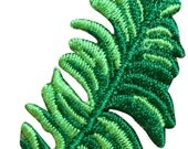 ID #7181 Tropical Fern Plant Branch Bough Embroidered Iron On Badge Applique Patch