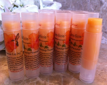 Lip Joy Sunday Morning Mimosa Natural,and Nourishing Lip Balm Treatment - there is a reason they all say it's the BEST Pura Gioia