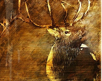 Re-Mailing for Elk Print - NOT FOR SALE