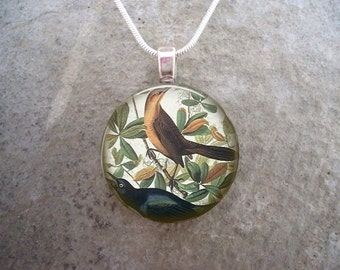 Bird Jewelry - Glass Pendant Necklace - Victorian Bird 33