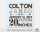 Baby Boy Birth Announcement Sign
