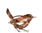 Wren, Animal art, watercolor painting art print, Woodland birds, bird illustration artprint.