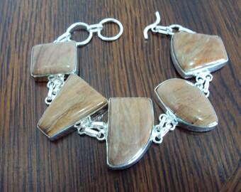 Crazy Beautiful Glossy Natural Wood Jasper Bracelet