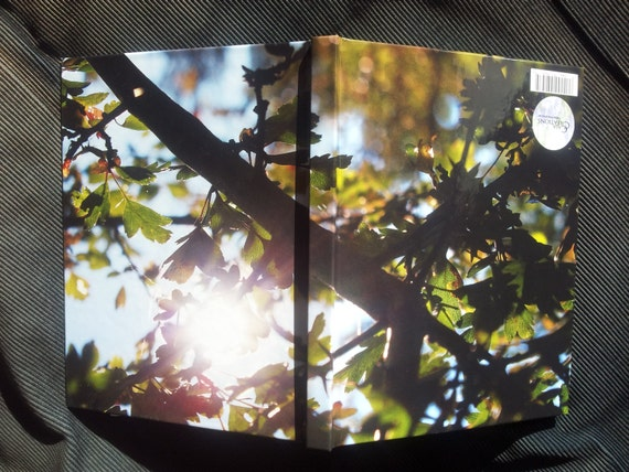 Front and back cover of notebook with sun and brach