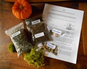 """Do It Yourself Terrarium Kit Large, X- Large Or XX-Large Kit (Without Container) For 7""""-12"""" Diameter Terrariums"""