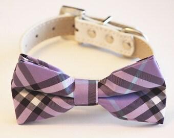 Lavender Dog Bow Tie, Pet wedding accessory, Lavender Wedding, Dog Lovers, Wedding idea