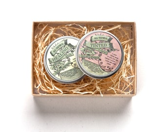 Mini Lip Tint and Healing Salve Duo - bestsellers - organic, vegan, bestsellers - travel size - gift set - mother's day