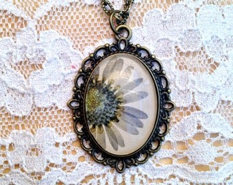 daisy necklace pressed flower necklace with real light blue dies pressed flowers and glass cabochon over beige leather