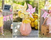 Pinwheels - Pink Lemonade Party - Set of 8 Pinwheels