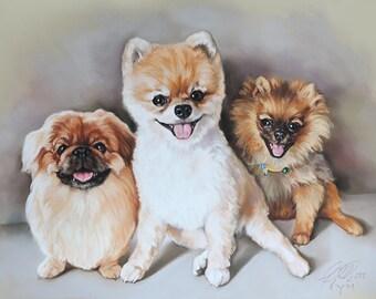 3 little dogs portrait
