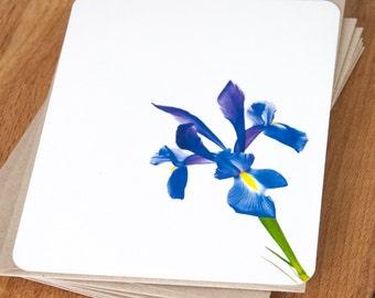 Note Card Set - Blue Iris - Stationary