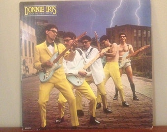 """Donnie Iris """"Back on the Streets"""" vinyl record"""