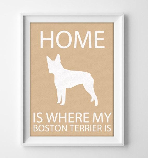 8x10 Boston Terrier Wall Art Illustrated Dog Art