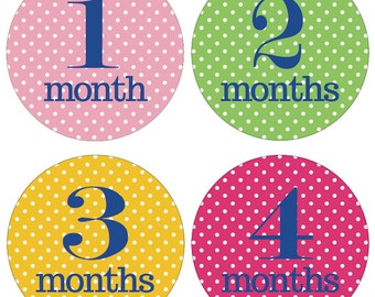 Monthly Baby Stickers, Milestone Stickers, Baby Shower or Baby Gift, BABY GIRL,  12 months, Polka dots