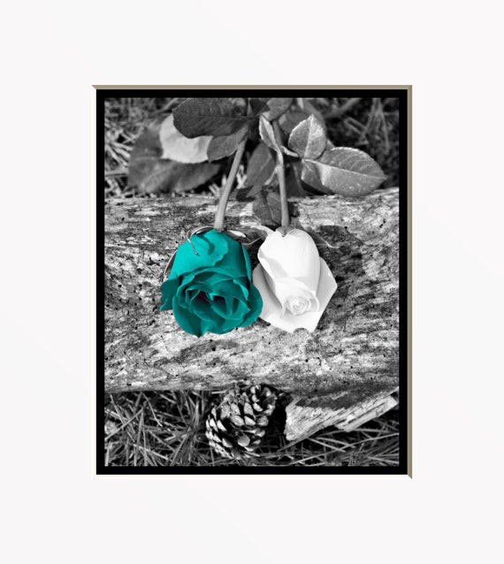 Black White Teal Wall Art Photography Rose By