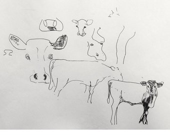 Black and white drawing, Ink, Sketch, COW CALVES in the FIELD, Artistic print, After original drawing by Cosé Manzano, limited edition of 5,